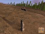 2.7 ruttingbull