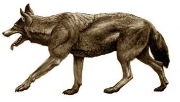 File:A dire wolf.png