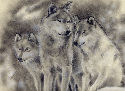 File:Wolf Family SOLD.jpg