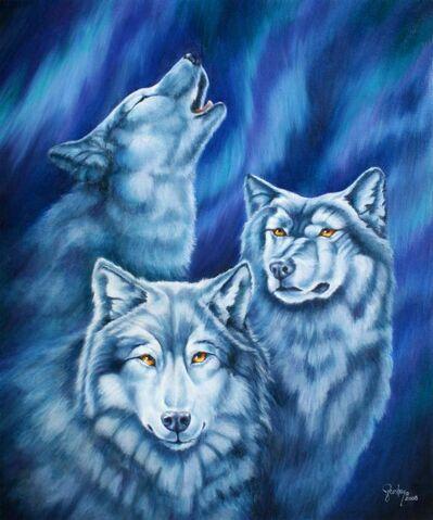 File:Aurora-wolves-wendy-froshay.jpg