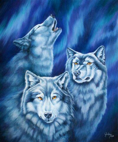 Aurora-wolves-wendy-froshay