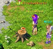 Sun Mushroom Loc 2