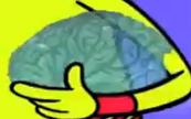 Diamond brain