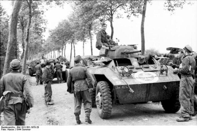 File:Captured Greyhounds in Northern France, 1944.jpg