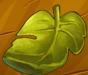 File:Collection-Fig Leaf.png