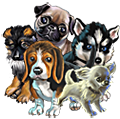 Collection-Puppy Set
