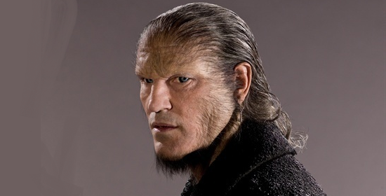 File:Greyback2.png