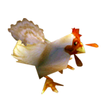 Datei:Huhn.png