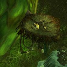 Harpy nest