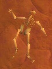 Mangled Human Remains