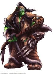 Image result for orc shaman