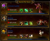 Battle Pet Slots team area 5 0 5 16135