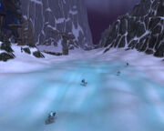Snowdrift Plains