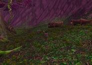 Teldrassil furbolg village
