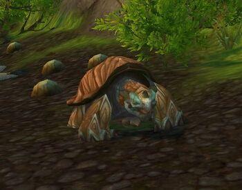 Great Turtle Hatchling
