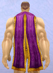 High Councillor's Cloak