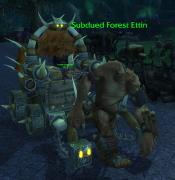 Subdued Forest Ettin