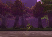 Teldrassil grove