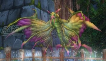 Amani Dragonhawk Spirit