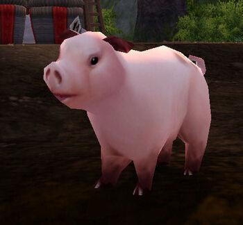 Thunderfoot Pig