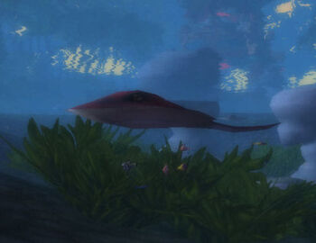 Barbed Ray