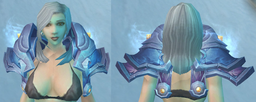 Khadgar's Shoulderpads of Conquest, Snow Background, Human Female