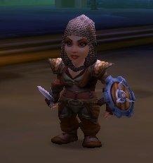Holdout Warrior