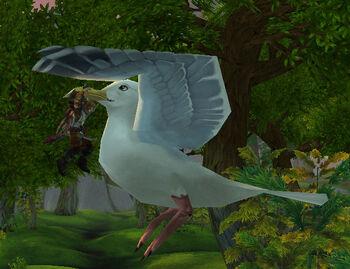 Highwind Albatross
