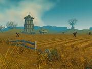 Molsen Farm