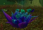 Corrupted Windblossom