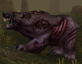 Diseased Grizzly
