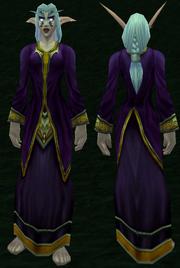 Lesser Wizard's Robe