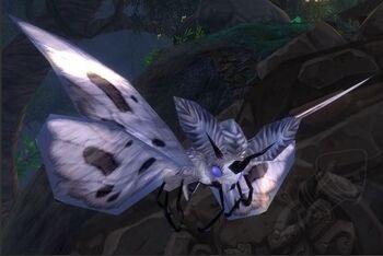 Image of Luyu Moth