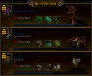 Battle Pet Slots team area locked 5 0 5 16135