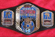 ROH TV Title 2