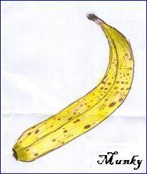 Munkydrawsabanana