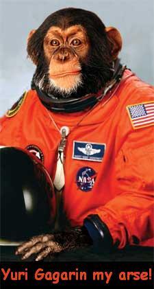 File:Space-monkey.jpg