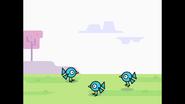 004 Bird Jumping 3