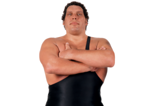 Andre The Giant pro