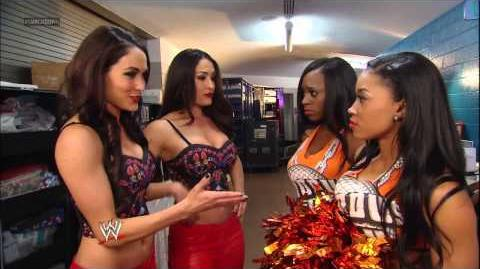 The Bella Twins and The Funkadactyls get into a huge brawl SmackDown, March 15, 2013