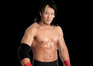 Yoshi Tatsu pro