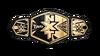 NXT Tag Team