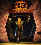 Triple H Wrestlemania-13