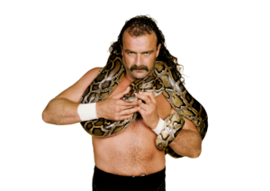Jake The Snake Roberts pro