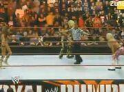 Divas bout in Royal Rumble