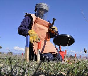 Land Mine Clearance