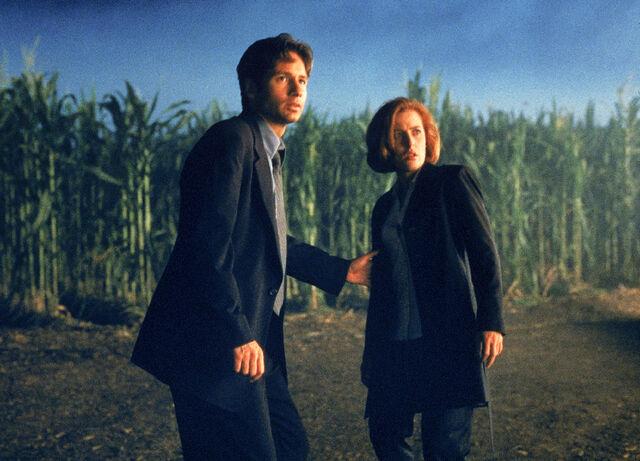 File:Cornfield Texas Mulder Scully Fight the Future.jpg