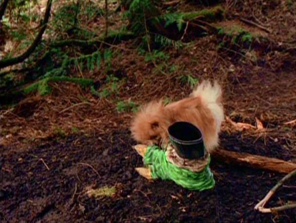 File:Queequeg finds a boot.jpg