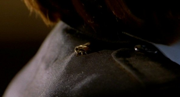 File:Bee on Dana Scully's jacket.jpg