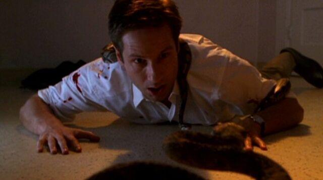 File:Fox Mulder covered in snakes.jpg